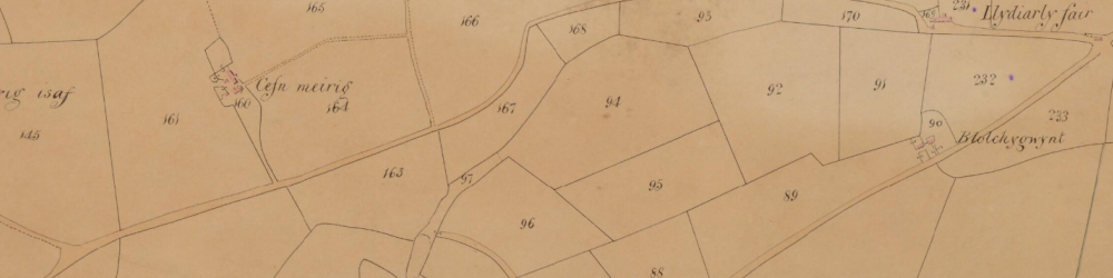 Part of the Tithe Map for the parish of Gwnnws