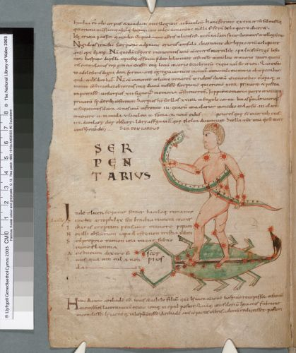 Constellation of Serpentius on Scorpio (f. 14v)